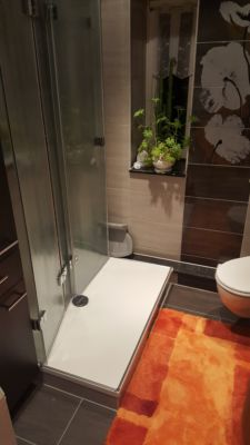 Duschwand komplett einklappbar